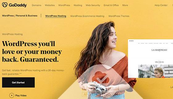 خدمة استضافة مواقع ووردبريس من شركة جودادي